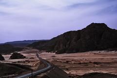 sinai-desert_0021