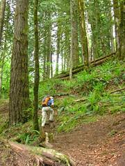 Steep trail ascending Glover Mtn