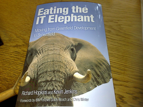 Eating the IT Elephant