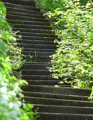 Crooked steps (Thomas Tolkien) Tags: school copyright art sports tom digital photography photo education nikon d70s teacher website scarborough teaching tolkien jrr tuition twitter robertbringhurst bringhurst peasholmpark thomastolkien tomtolkien httpwwwtomtolkiencom httpthomastolkienwordpresscom tolkienart notrelatedtojrrtolkien tolkienteacher tolkienteaching