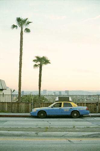 Cab Plus Two Palm Trees