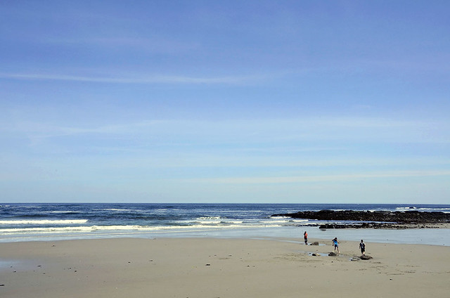 beach in Wells, Maine