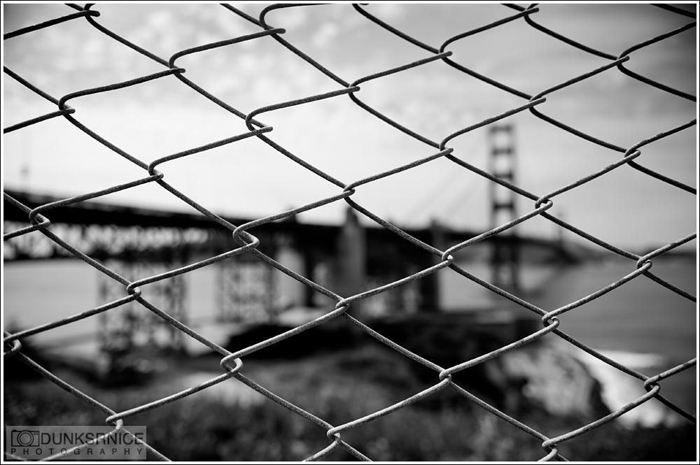 Fence B&W.