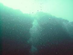 PICT0010 (JoseQ) Tags: blue mar hole great tiburones buceo caribe submarinismo tiburón