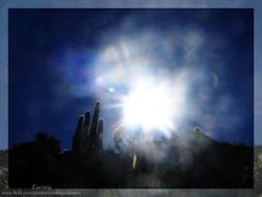 light sun luz sol argentina jujuy tilcara gargantadeldiablo cardón