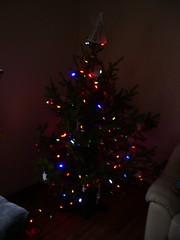 xmastree lit