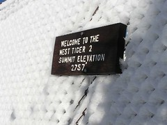 Summit of Tiger 2
