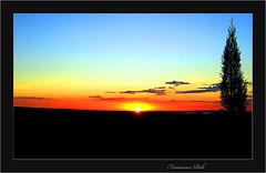 El ciprs del ocaso. (Fotgrafo-robby25) Tags: sea costa coast mar playa reefs wests ocasos dawns surges oleajes ocasosyalboradas