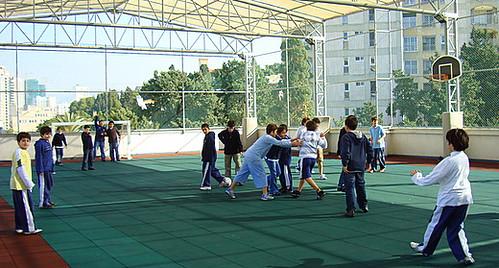 Hamra 030