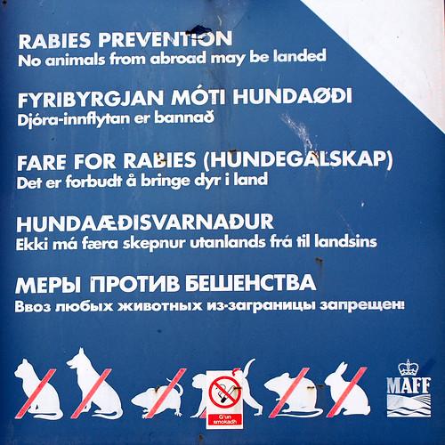 Rabies #5