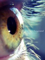 Vision II (Doodoox - Juliette Legrand) Tags: macro eye colors see eyes searchthebest oeil vision juliette vue voir legrand doodoox betterthangood