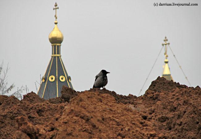 church_crow