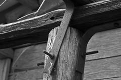 Senza titolo (godzillante|photochopper) Tags: bw bn biancoenero savini galilea