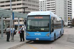 IMG_4947 (djp3000) Tags: finchstation yrt ttcstrike bus busstation viva vivablue publictransit publictransport transit canoneosdigitalrebelxt