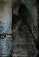 Apparition (moggierocket) Tags: old castle abandoned stairs peeling darkness ghost basement eerie creepy mysterious haunting dreamy handrail ghostly apparition poltergeist d80 chateaudenoisy 2bdasest hourofthesoul kattenmeisje