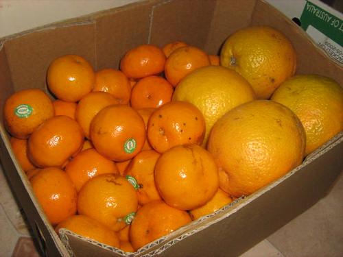 mandarins and oranges