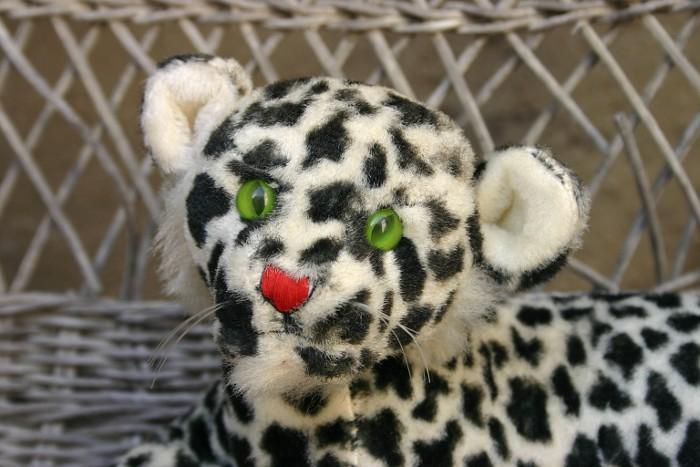 snowleopard3