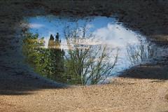 La quiete dopo la tempesta (Carmelux) Tags: alberi palermo pioggia riflesso villagiulia pozzanghera canon55250 canon550d