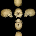 skull cross