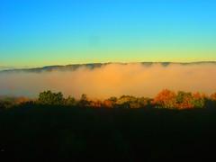 Morning mist (kezwan) Tags: autumn mist gteborg hisingen kezwan diamondclassphotographer flickrdiamond