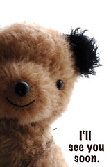 I'll see you soon (yoshiko314) Tags: bear notice handmade anniversary exhibition teddybear nagoya 10th information imade
