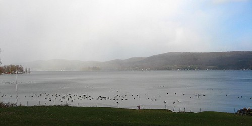 Canadarago Lake half n half