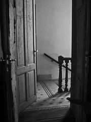 salida (Kinky Lemon) Tags: door argentina stairs puerta buenosaires escalera banister baranda photofaceoffwinner pfogold agero