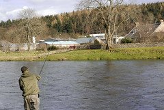 Jussi's spey cast (PanuK) Tags: flyfishing spey