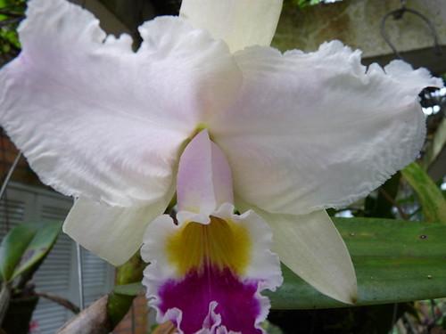 MAIO 2011 079(1)
