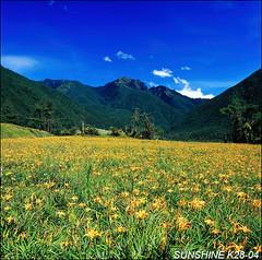 k28_04,07100814------- (sunshine) Tags: taiwan                      120hasselblad sunshine