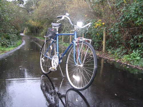 Schwinn Suburban in the rain
