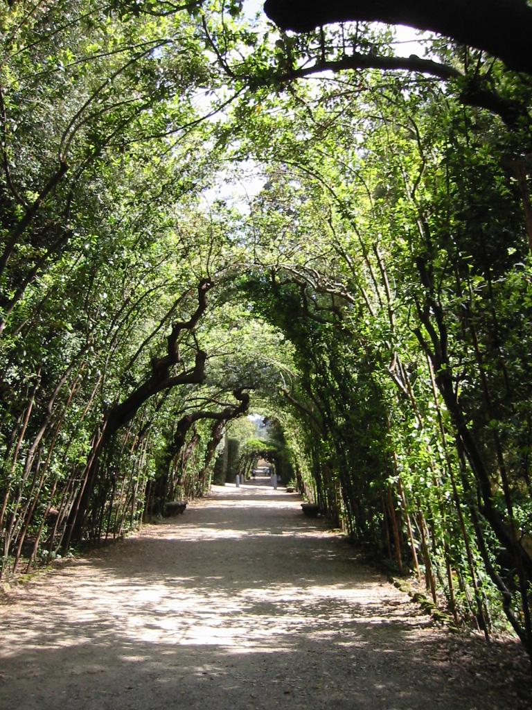 Boboli Gardens Path - Florence