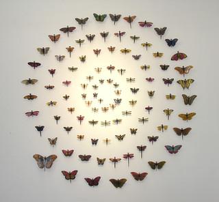 One Hundred Butterflies. 2007