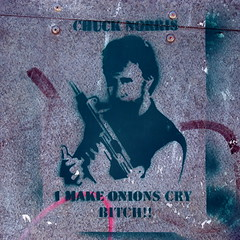I make onions cry... (badjonni) Tags: street celebrity art google search stencil funny onions adelaide cry 1000 chucknorris bloged