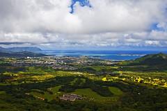 Nuuanu Pali (Pali Lookout) (Bill Adams) Tags: landscape hawaii searchthebest oahu explore palilookout nuuanupali naturesfinest canonef28135mmf3556isusm flickrfriday flickrsbest speclandscape kalelekaanae