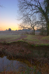 Howen Bottom - I (Skink74) Tags: uk morning england cold tree 20d water leaves landscape dawn early stream frost hampshire brook icy newforest hdr eos20d canon1022f3545 3xp efs1022mmf3545usm fdrtools howenbottom