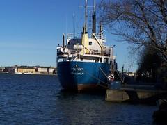Polfors (tompa2) Tags: fartyg riddarfjärden mälaren träd vessel ship boat stockholm polfors södermanland södermalm sjö sverige sweden