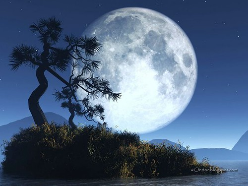 Very Big Moon Nature Photo