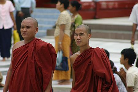 b_monks