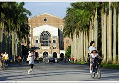 Palm Tree Boulevard in NTU  (*dans) Tags: campus taiwan ntu taipei  nationaltaiwanuniversity  palmtreeboulevard