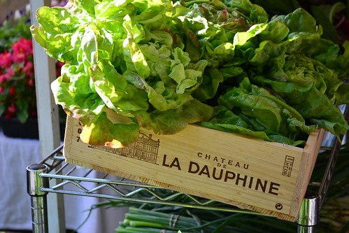 Lettuces in Wooden Crate
