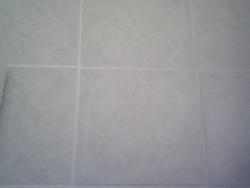 2007 Grout with Tile Grout Coating