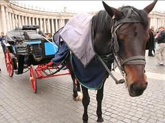 Pensavo fosse amore... (tini.mm) Tags: roma cavallo calesse