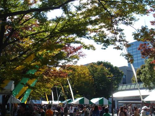 earth garden 秋