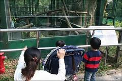 2007國旅卡DAY4(壽山動物園)006