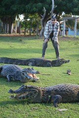 So many caiman