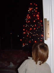Tree Outside