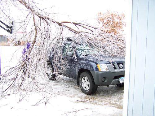 Tree on car.