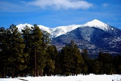 Flagstaff, Arizona (JKPeterson) Tags: trip trees vacation arizona snow mountains forest fun nikon misc flagstaff sledding platinumphoto jpeterson d40x natureselegantshots