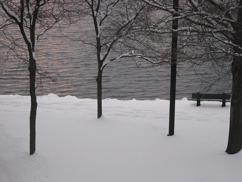 Winter on the Charles River